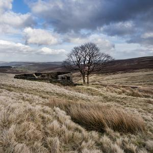 Rural Countryside Landscape in England by Craig Roberts