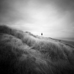 Seacolony by Craig Roberts