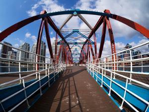 The Detroit Bridge by Craig Roberts