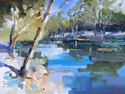 Bank on the Murray by Craig Trewin Penny