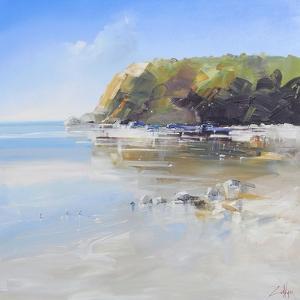 Coast Line by Craig Trewin Penny