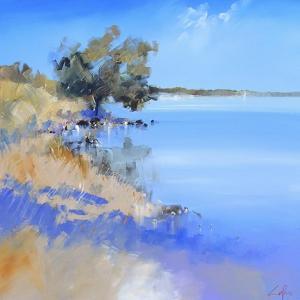 Lake Bolac by Craig Trewin Penny