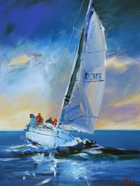 Night Sail by Craig Trewin Penny