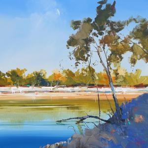 River Bank by Craig Trewin Penny