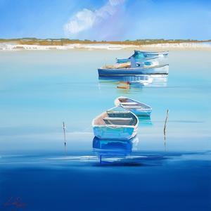 River Moorings by Craig Trewin Penny