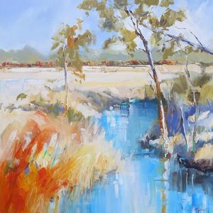 Summer Creek by Craig Trewin Penny