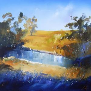 Winter Dam by Craig Trewin Penny