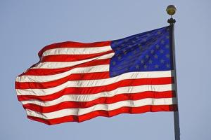American Flag on Flagpole by Craig Tuttle