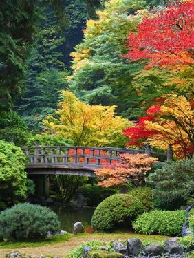 Bridge in Japanese Garden by Craig Tuttle