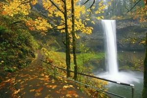 Fall Colors Add Beauty to South South Silver Falls, Silver Falls State Park, Oregon by Craig Tuttle