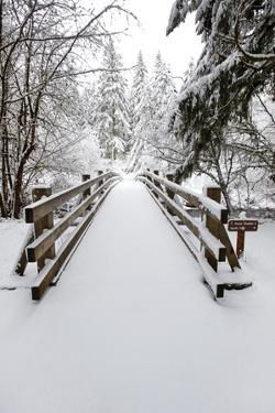 Footbridge Covered in Snow, Silver Falls State Park, Oregon, USA by Craig Tuttle