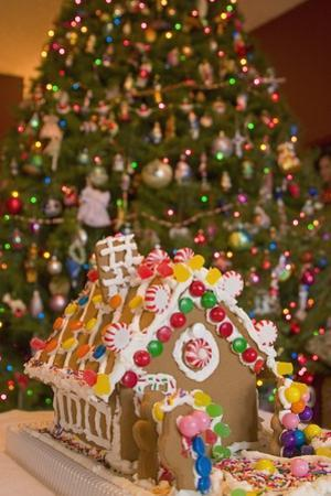 Gingerbread House and Christmas Tree by Craig Tuttle