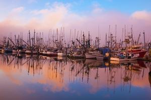 Morning Fog and Fishing Boats, Newport Harber, Oregon Coast. Pacific Northwest by Craig Tuttle