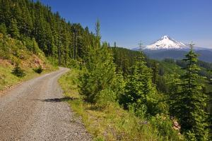 Mt. Hood from Mt. Hood National Forest. Oregon, USA by Craig Tuttle