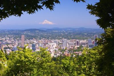 Mt.Hood from Pittock Mansion. Portland Oregon. Pacific Northwest by Craig Tuttle