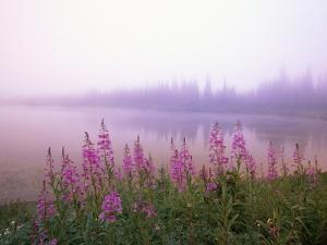 Reflection Lake at Sunrise by Craig Tuttle