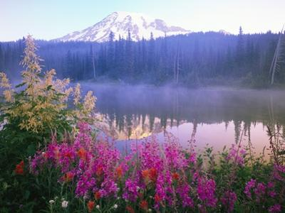 Wildflowers in Bloom by Lake on Mount Rainier by Craig Tuttle
