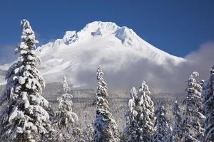 Winter Snow Adds Beauty to Mt. Hood, Oregon. Oregon Cascades. by Craig Tuttle