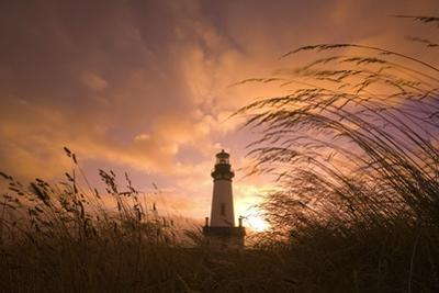 Yaquina Head Lighthouse at Sunset by Craig Tuttle
