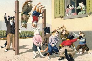 Crazy Cats at the Playground