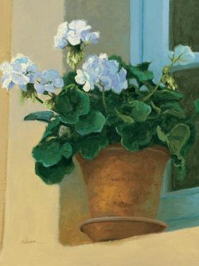 Creancey Geraniums I
