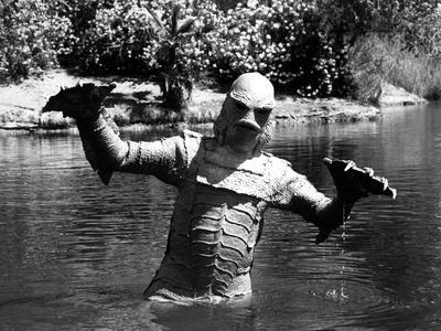 https://imgc.allpostersimages.com/img/posters/creature-from-the-black-lagoon-1954_u-L-Q12PFPX0.jpg?artPerspective=n