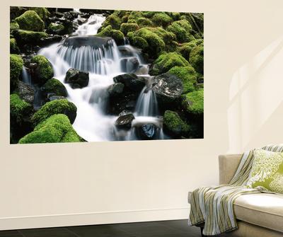 https://imgc.allpostersimages.com/img/posters/creek-near-sol-duc-falls-olympic-national-park-washington-state-usa_u-L-PIF5CN0.jpg?artPerspective=n