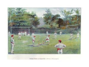 Cricket Field at Bournville, 1892
