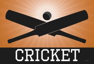 Cricket Orange Sports Poster Print
