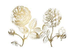 Gold Foil DePasse Roses II by Crispin DePasse