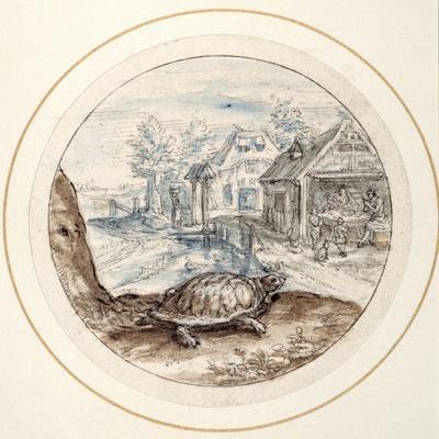Tortoise, Early 17th Century