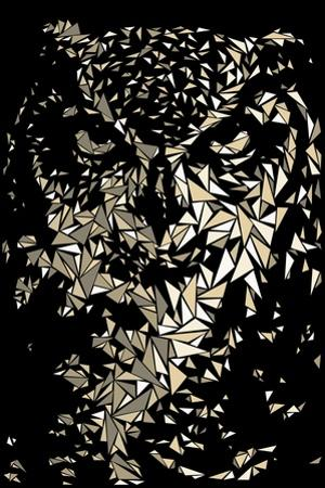 Owl by Cristian Mielu