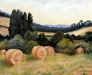 Eynsford Valley by Cristiana Angelini
