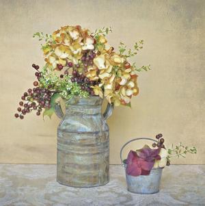 Caramel Hydrangeas by Cristin Atria