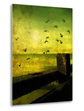 A Flock of Birds Flying over a Beach Scene with Breakers by Cristina Carra Caso