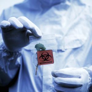 Environmental Contamination by Cristina