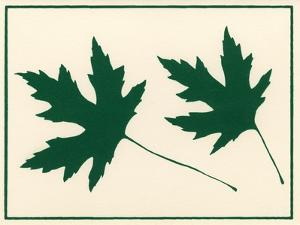 Leaves by Crockett Collection