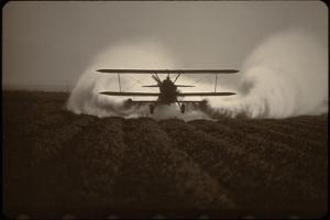 Crop Duster I