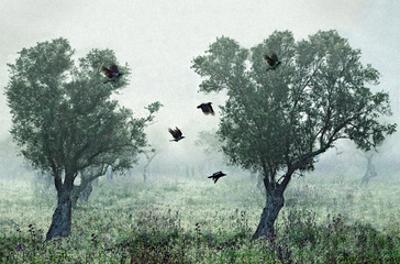 Crows in the Mist