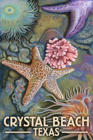 https://imgc.allpostersimages.com/img/posters/crystal-beach-texas-tidepool_u-L-Q1GQNWV0.jpg?p=0