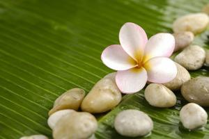 Pile of Stones with Frangipani on Banana Leaf by crystalfoto