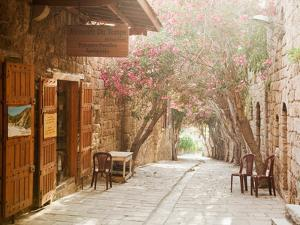 Shops in a Narrow Street in the Souq at Byblos, a Small Coastal Town in Lebanon by Cultura Travel/Philip Lee Harvey