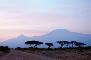 Sunrise View of Mount Kilimanjaro behind a Line of Acacia Trees. Amboseli National Park, Kenya by Cultura Travel/Philip Lee Harvey