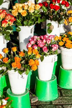 Colorful Flowers in A Flower Shop on A Market by Curioso Travel Photography