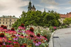 Garden in Wawel Castle, Cracow, Poland by Curioso Travel Photography