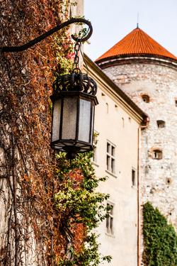 View of Pieskowa Skala Castle and Garden, Medieval Building near Krakow, Poland by Curioso Travel Photography