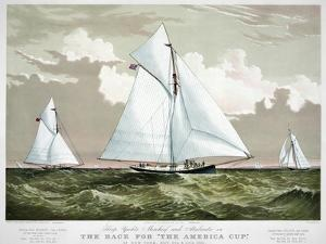 America's Cup, 1881 by Currier & Ives