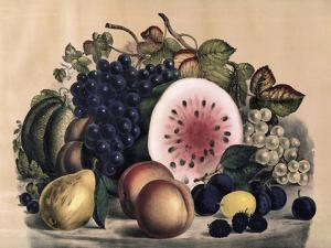 Autumn Fruit by Currier & Ives