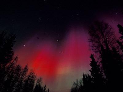 https://imgc.allpostersimages.com/img/posters/curtains-of-northern-lights-above-fairbanks-alaska-usa_u-L-P42K0Z0.jpg?artPerspective=n