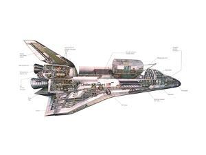 Cut-Away Diagram of the Space Shuttle